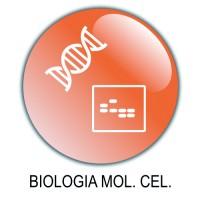 15 Biologia Molecolare/Cellulare